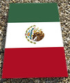 Mock up of the Mexico World Cup Beanbag